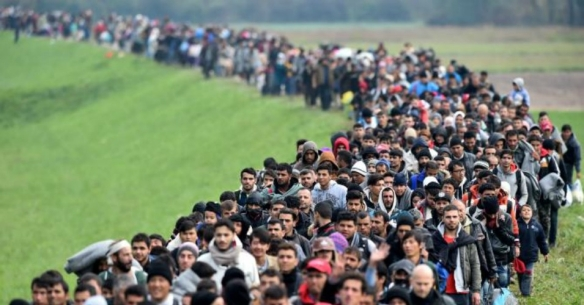 refugees_3.jpg